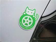猫バンバン当たる