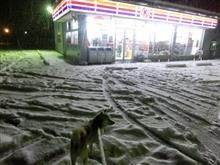 雪 うちの街降ってきました ウインタースポーツエリア雪不足解消できてほしいです