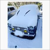 雪に埋もれてる~(´;ω;`)