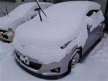 いぬころ日記~大雪編~
