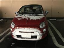 凄い雪でしたね。(^◇^;)