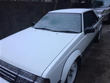 今朝は雪降ってた・・・燃費記録を更新しました!