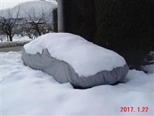 また、大雪です(T_T)