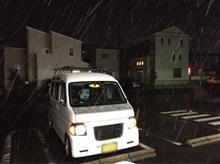 今年は当たり雪ですね〜