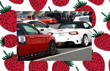 Alfa Romeo Challenge 2017 Rd.1 *TC2000