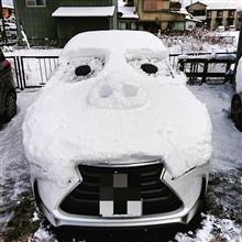 先月の雪で