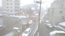 テレビの天気予報は関東南部は雪は積もらないでしょうって言ってたけど~