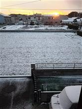 寒かったですね~(>_<)