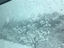 スキーに行ってきました(^^)/