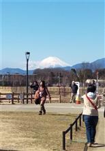 綾瀬スポーツ公園に行ってきました。