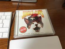 猫の音楽と革命