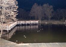 スポーツ公園の池