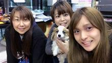 Dai桜✿開花宣言!!【トライアル発】