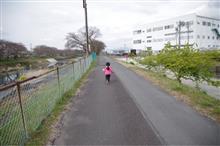 桜が咲いたかな?娘と散歩