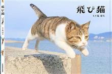 福島県はネコさかり‼ 飛び猫の