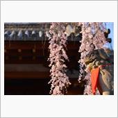 梅林の吹雪、祇園精舎の鐘