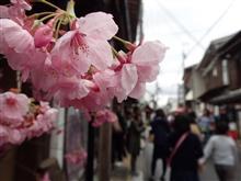 桜の季節に吉野山