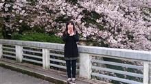 桜 (*'ω' *) を見に駿府公園に('ω')ノ