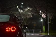 松戸桜ドライブ H29.04.08