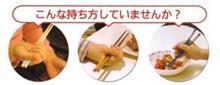 箸のツカイカタ