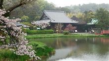 春雨の中、金沢八景付近をおさんぽ♪