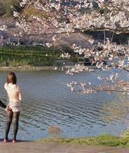 【花とゆめ】花と俺と団子とチャリンコと幻の鳥とかクルーザーとか(笑)