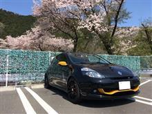 桜とRB7