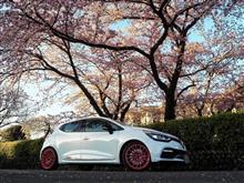 2017年の桜と富士山とゆずさんと…