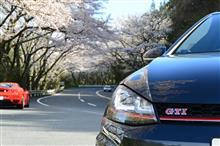 マツダターンパイクの桜は満開です