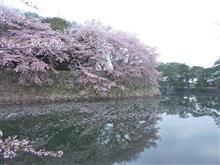 ヴィヴィオ春の西日本オフ
