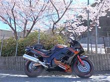 今日もバイク日和!
