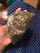 タイ人にもらった謎の薬草