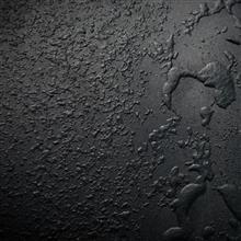 モーターファンフェスタ2017 Ferrari関連
