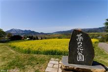 北信濃の春(飯山菜の花公園&高山村)を満喫した。