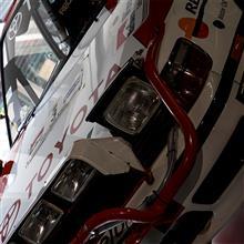 【写真】TOYOTA Celica GT-Four (ST165) Group.A Safari Rally
