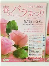 春のバラ フェスティバル