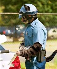 警察のお世話になります…