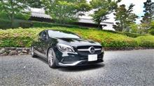 新緑早朝ドライブ(妙満寺と東福寺)