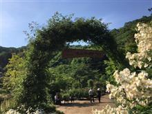 滝ノ入ローズガーデンです。