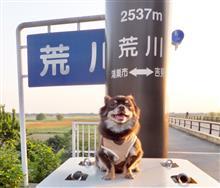 もん太と川幅日本一(荒川)を行く!