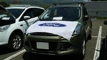 KUGA Morning Cruise 3rd at Yamanaka-Lakeの日