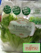 なかなか…ちゃんとした野菜だが…ピンときません…( ∧_∧;)