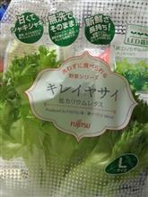富士通のレタス~