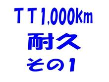 TT1,000km耐久、その1