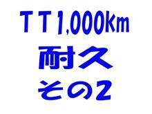TT1,000km耐久、その2