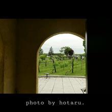 Photo drive ~家族との時間~