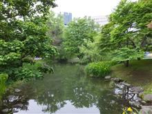 初めての中島公園