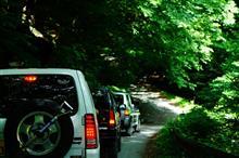 清涼感溢れる林道徘徊