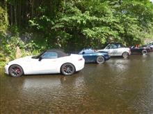 川に集いしオープンカー、なれど揃って皮かむり…だって洗車だもの