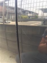 暑さにヤラレて洗車断念したのに、他の作業で暑さにヤラれた話。